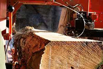 Q905 Rip Portable Mill and Resaw Blades in action
